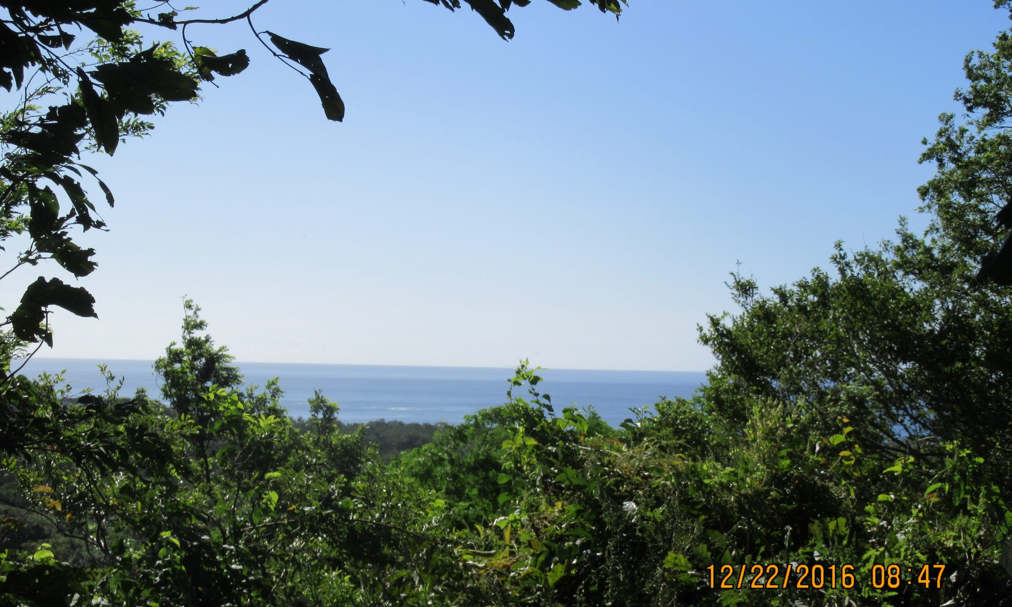 Property Costa Rica for sale